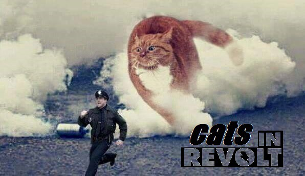 cropped-cats-in-revolt_flyer.jpg